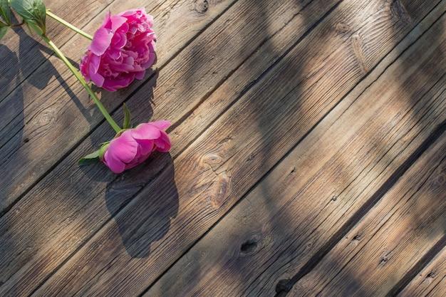 Hermosas peonías sobre fondo antiguo de madera oscura en la luz del sol