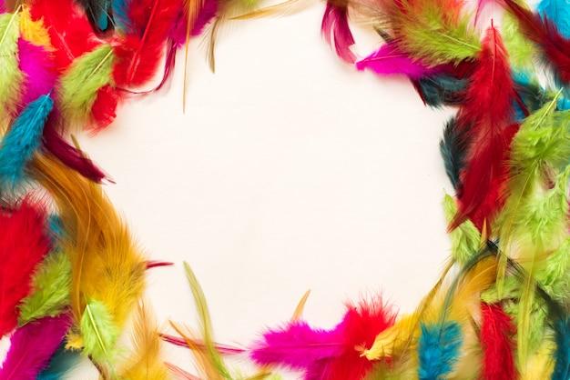 Hermosas plumas de colores. copia espacio