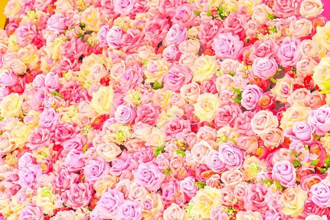 Hermosas rosas coloridas