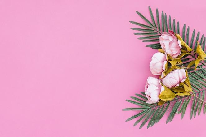 Hermosas rosas con hojas de palma sobre fondo rosa