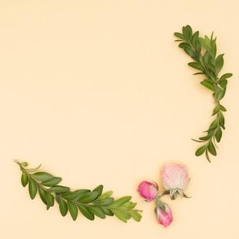 Hermosas rosas y hojas ramitas sobre fondo beige