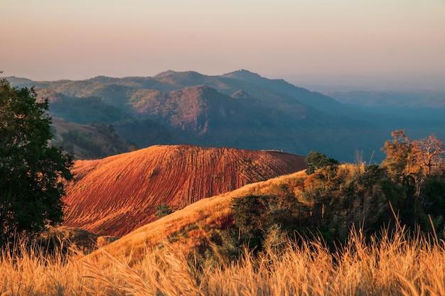 Hermosas vistas a la montaña