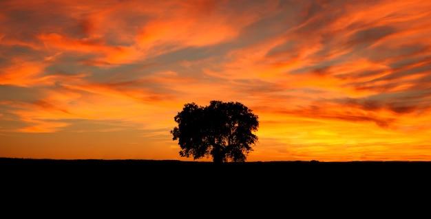 Hermoso amanecer mostrando un cielo rojo