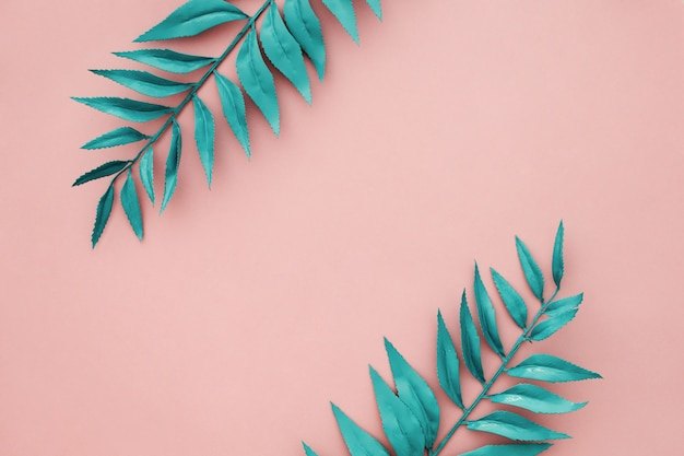 Hermoso borde azul deja sobre fondo rosa