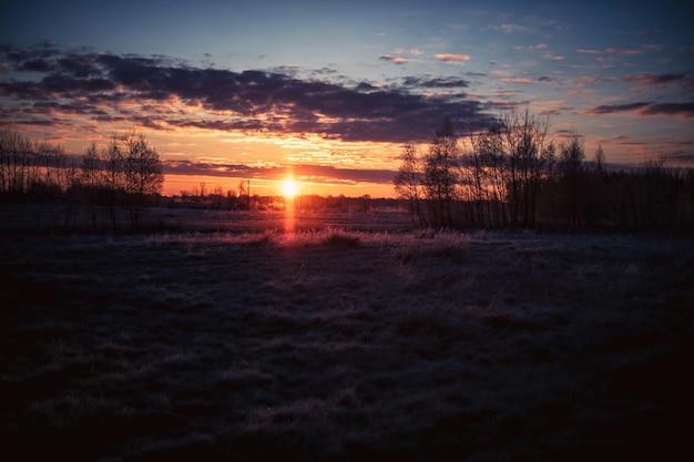 Hermoso campo cubierto de hierba y los árboles bajo la puesta de sol en el cielo nublado