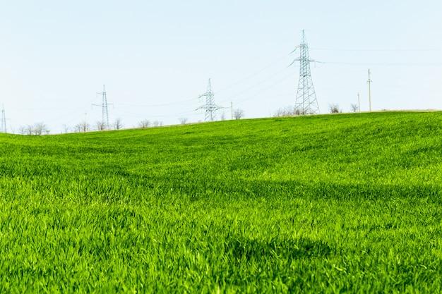 Hermoso campo verde