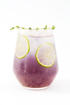 Hermoso cóctel de verano Foto Premium