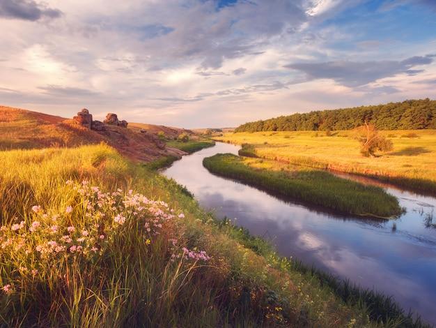 Hermoso colorido atardecer de verano en el río con flores.