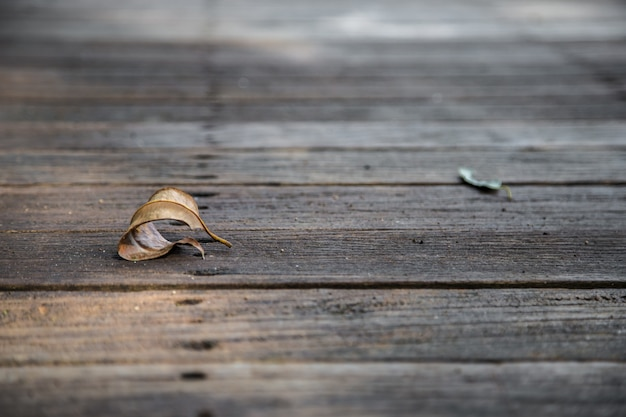 Hermoso fondo de madera con la hoja