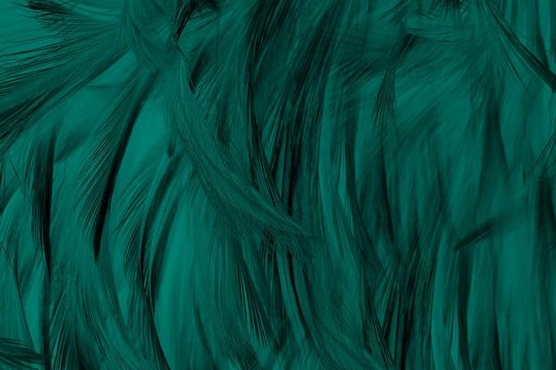 Hermoso fondo de textura de pluma de tono de colores de florida verde oscuro verde, tendencias de color