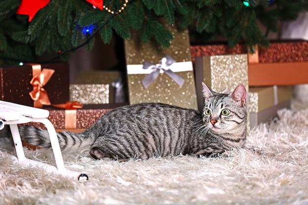 Hermoso gato cerca del árbol de navidad con decoración
