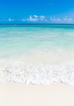 Hermoso mar tropical