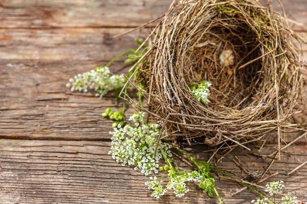 Hermoso nido de pajarito sobre fondo de madera
