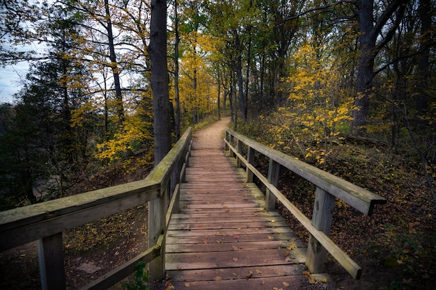 Hermoso otoño otoño paisaje en canadá