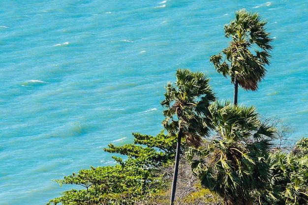 Hermoso paisaje al aire libre de mar y playa con palmera de coco.