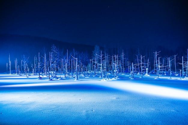 El hermoso paisaje al aire libre con el río azul de la charca en la noche con la luz para arriba en la estación del invierno de la nieve
