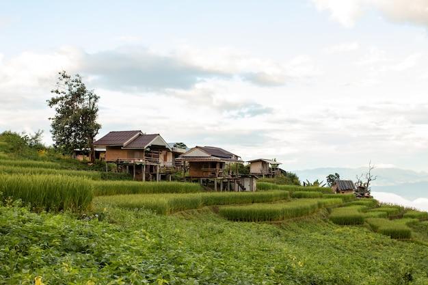 Hermoso paisaje de alojamiento turístico en altas montañas, valles, arrozales y parcelas agrícolas