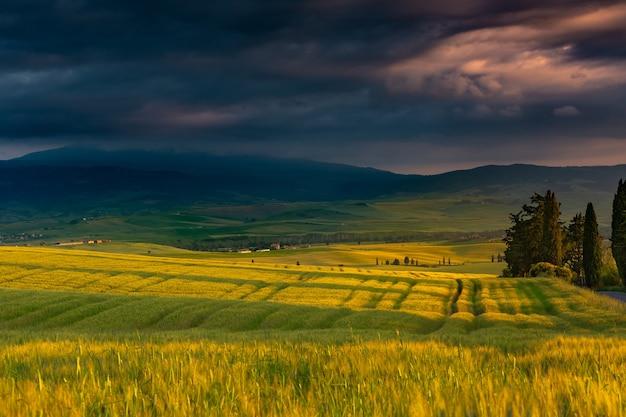 Hermoso paisaje de un campo rodeado de colinas en el campo