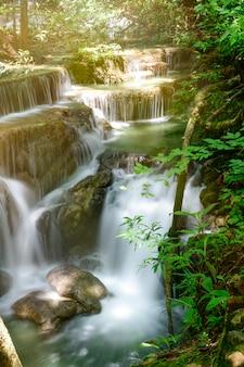 Hermoso paisaje de la cascada y hojas verdes.