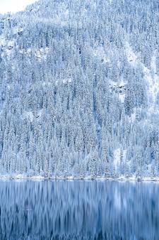 Hermoso paisaje de una gran cantidad de árboles cubiertos de nieve en los alpes reflejándose en un lago