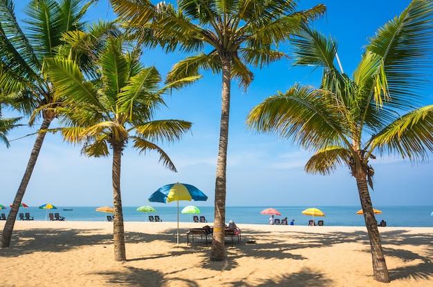 Hermoso paisaje con grandes palmeras verdes en primer plano al fondo de sombrillas y tumbonas para turistas en una hermosa playa exótica en el sur de la india, kerala.