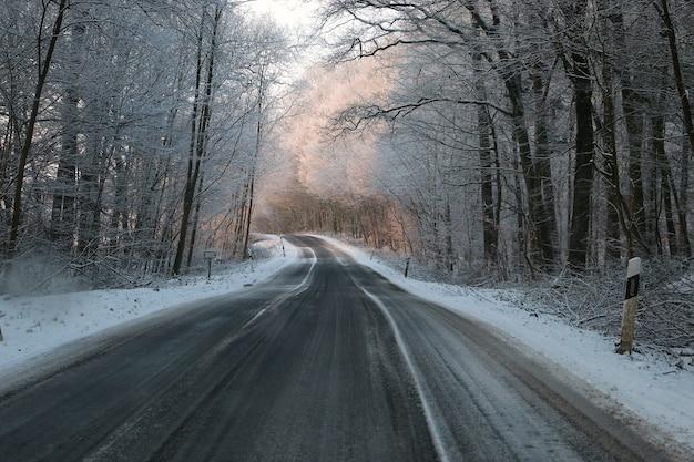 Hermoso paisaje invernal: una carretera asfaltada a través de bosques