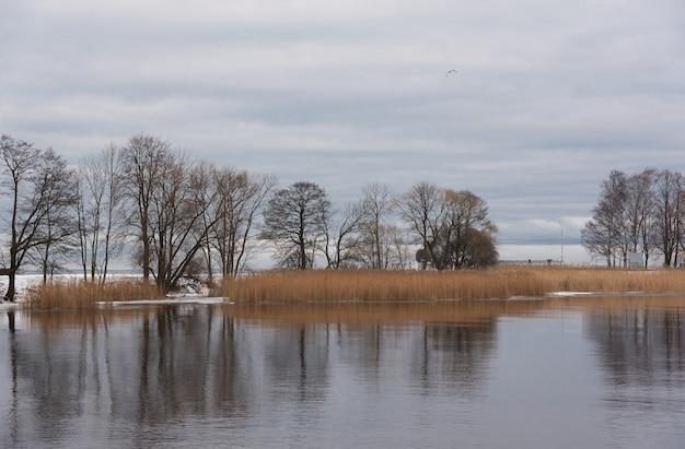 Hermoso paisaje de invierno en la costa del golfo finlandés en el parque peterhof en san petersburgo