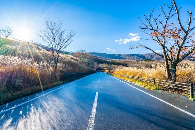 Hermoso paisaje del lado de la carretera alrededor de la montaña fuji