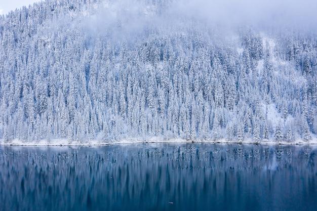 Hermoso paisaje de un lago rodeado de árboles cubiertos de nieve en los alpes suizos, suiza