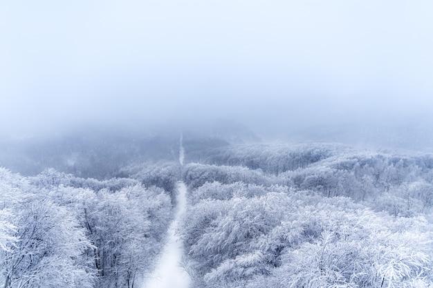 Hermoso paisaje de montaña de invierno en zao, japón