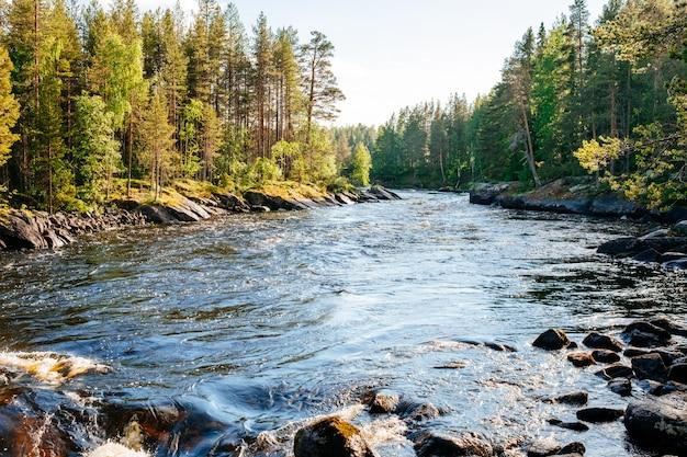 Hermoso paisaje con montañas, bosques y ríos.