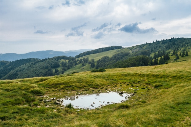 Hermoso paisaje de las montañas de los cárpatos ucranianos.