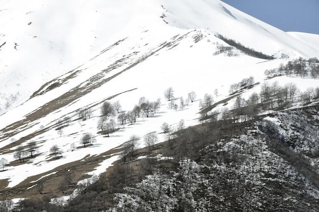 Hermoso paisaje de las montañas rocosas y nevadas en el campo