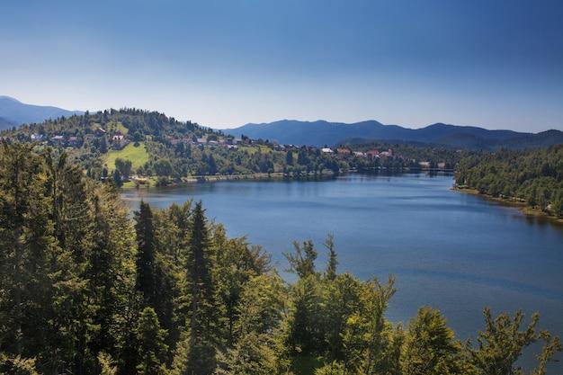 Hermoso paisaje natural del río en europa bosque verde con montañas en el fondo