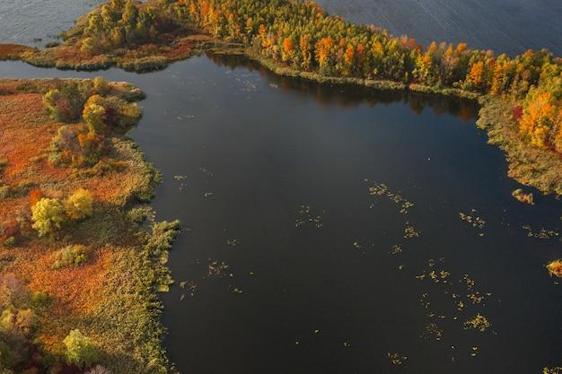 Hermoso paisaje natural del río con hermosos árboles de otoño vista aérea drone shot