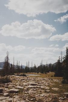 Hermoso paisaje de la naturaleza del campo con colinas y árboles bajo un cielo azul nublado