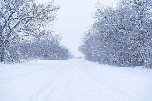 Un hermoso paisaje nevado camino en el bosque entre los árboles temporada de invierno