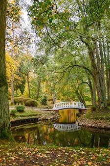 Hermoso paisaje otoñal en palanga, lituania