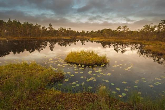 Hermoso paisaje otoñal en el pantano norte con una isla al atardecer