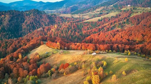 Hermoso paisaje de panorama otoñal de montaña con prado y bosque colorido. árboles rojos, amarillos, naranjos en las laderas. parque nacional natural synevyr, cárpatos, ucrania, europa.