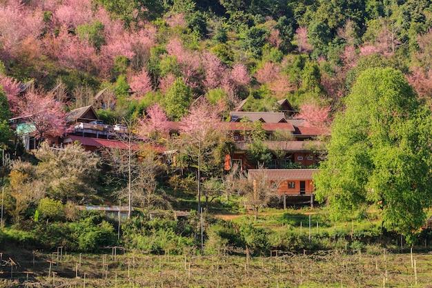 Hermoso paisaje con pueblo en valle, tierras de cultivo y fondo de cielo azul en tailandia
