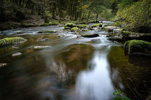 Hermoso paisaje de un río con muchas formaciones rocosas cubiertas de musgo en el bosque