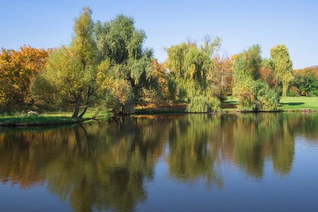Hermoso paisaje de verano con una costa de árboles y reflejos en el agua.