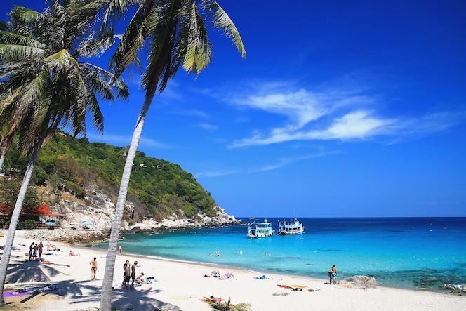 Hermoso paraíso tropical island, koh tao, tailandia