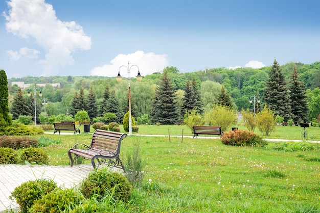 Hermoso parque verde theophania.landscape.