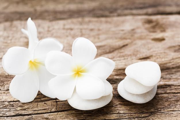 Hermoso plumeria o templo, flor de spa con piedras zen blancas sobre fondo de madera rústica