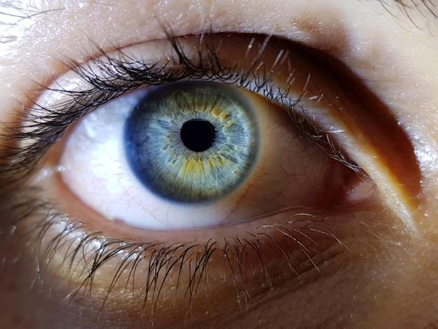 Hermoso primer plano de los profundos ojos azules de una mujer humana