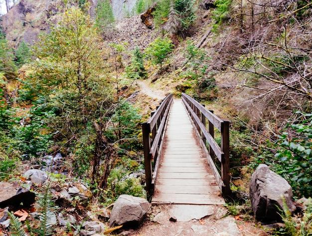 Hermoso puente de madera en las montañas que conduce a un paseo aventurero