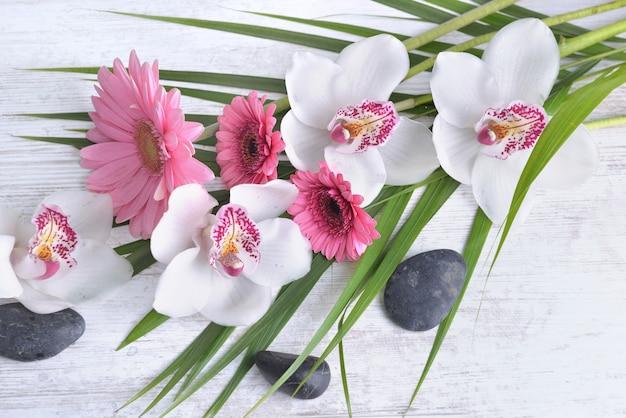 Hermoso ramo de orquídeas blancas y margaritas rosas en hojas y guijarros en mesa blanca