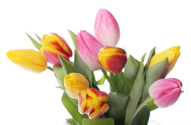 Hermoso ramo de tulipanes, tulipanes coloridos, fondo de naturaleza